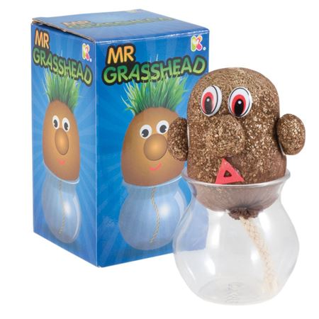 Picture of Mr Grasshead
