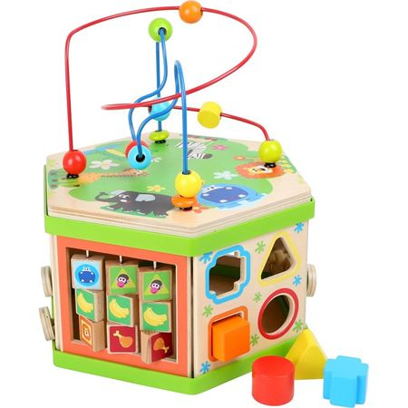 Picture of Safari Activity Cube