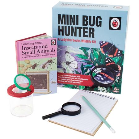 Picture of Ladybird Mini Bug Hunter
