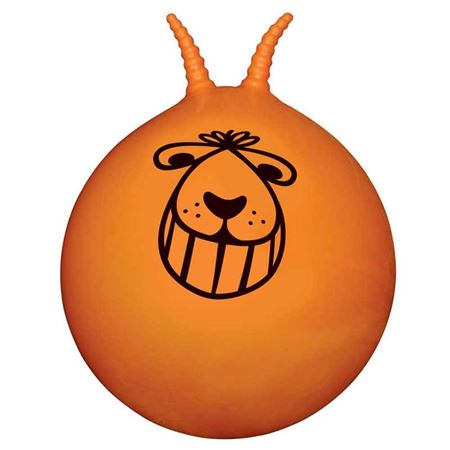 Picture of Retro Space Hopper