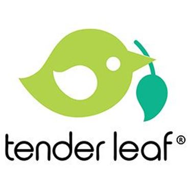 Picture for brand Tender Leaf Toys
